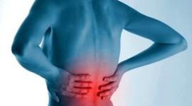 Hábitos para la espalda