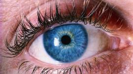 ¡Qué ojos más rojos tienes!
