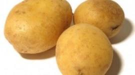 ¿Cómo que las patatas engordan?