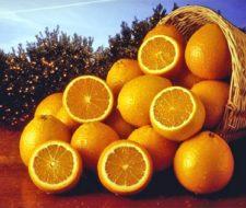 Naranjas: sabrosas y sanas