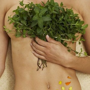 aplicacion de plantas medicinales