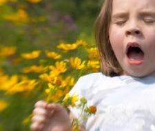 Alergias respiratorias: síntomas